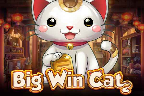 Play'n GO Big Win Cat